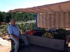 verse zomergroenten in Epidavros